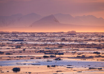 sunrise creating a world of pinks and blues over pieces of floating ice in greenland by dave brosha canadian outdoor photographer